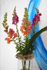 Blumensteckhilfe mit roten Blumen